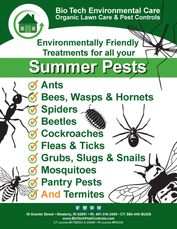 Summer Pests