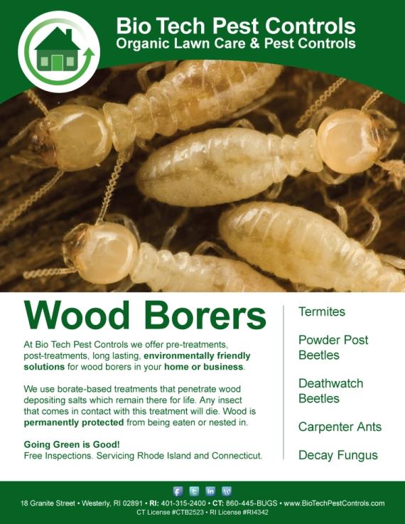 Wood Borers